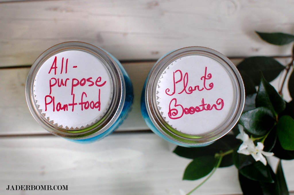 blue-mason-jar-plant-food-containers