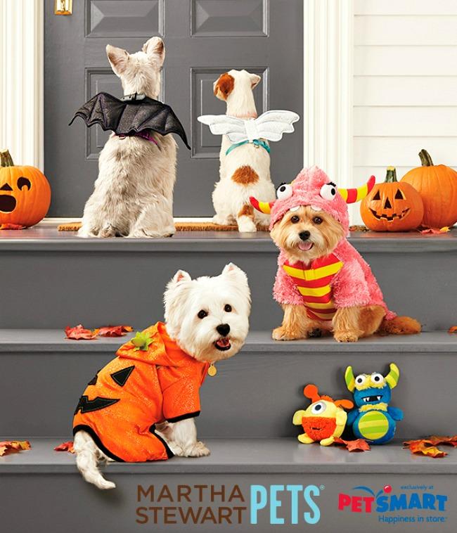 halloween-popup-mspets-halloween_vert