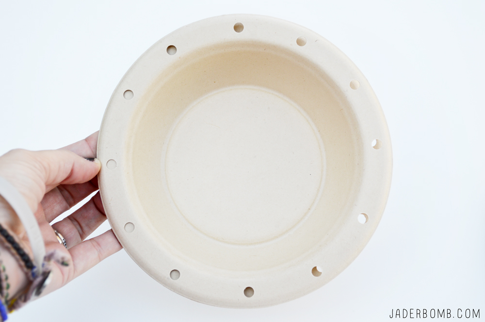 PUNCHED PAPER PLATES
