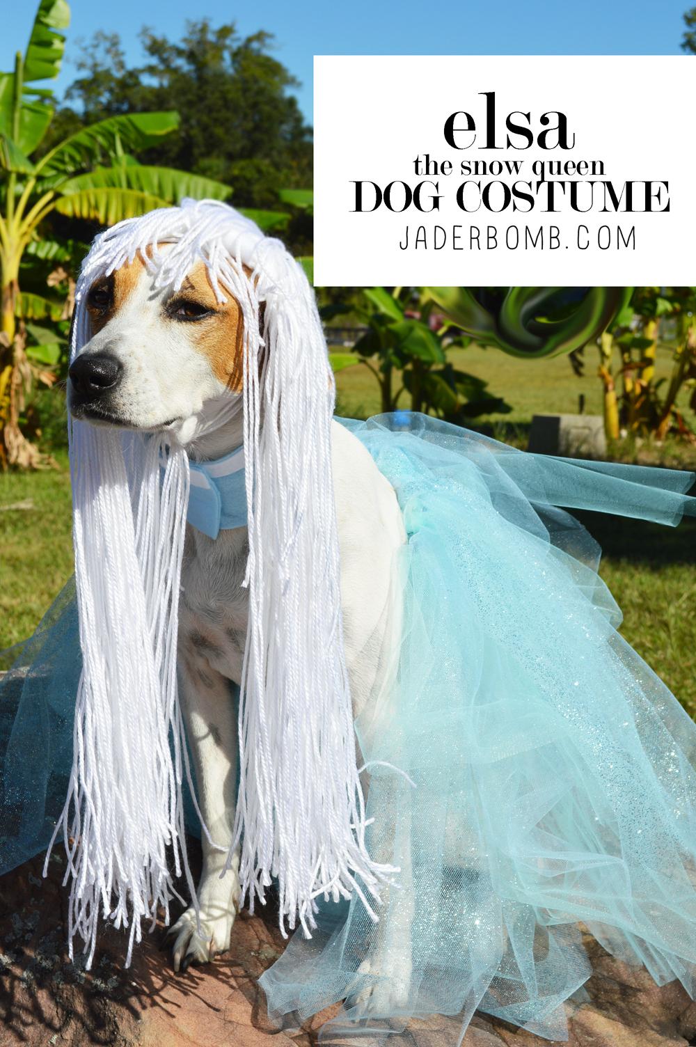 FUN DOG COSTUMES