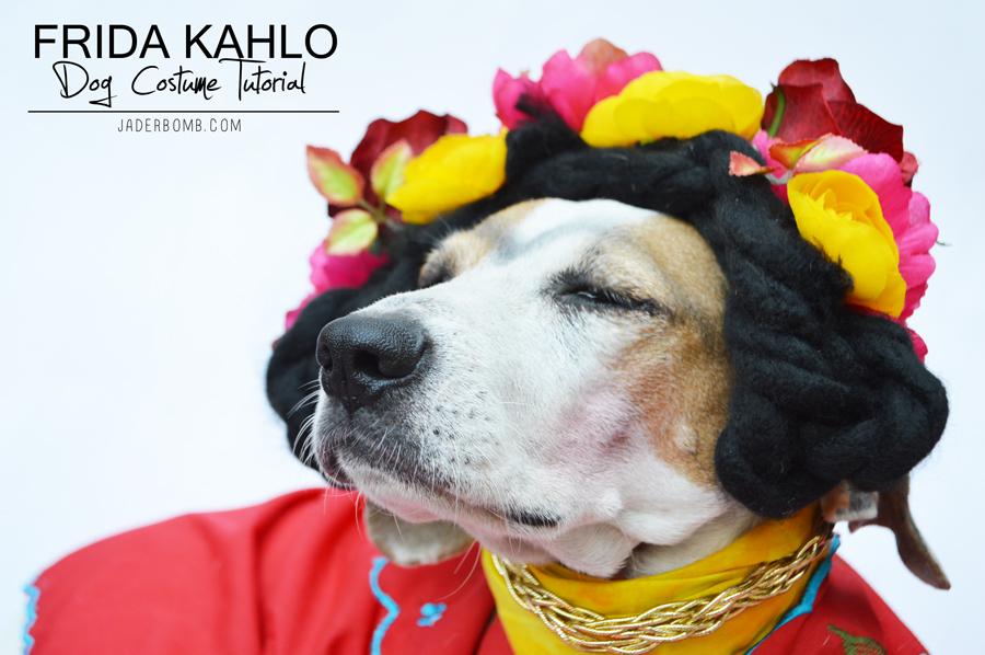 easy dog costumes