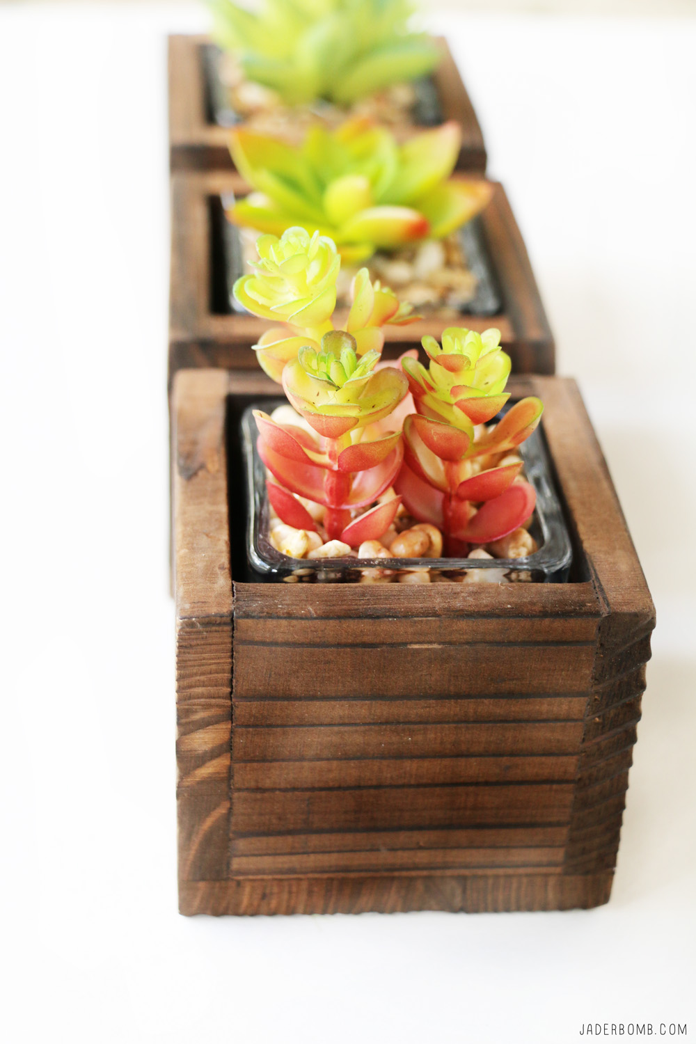 wax plant diy projects